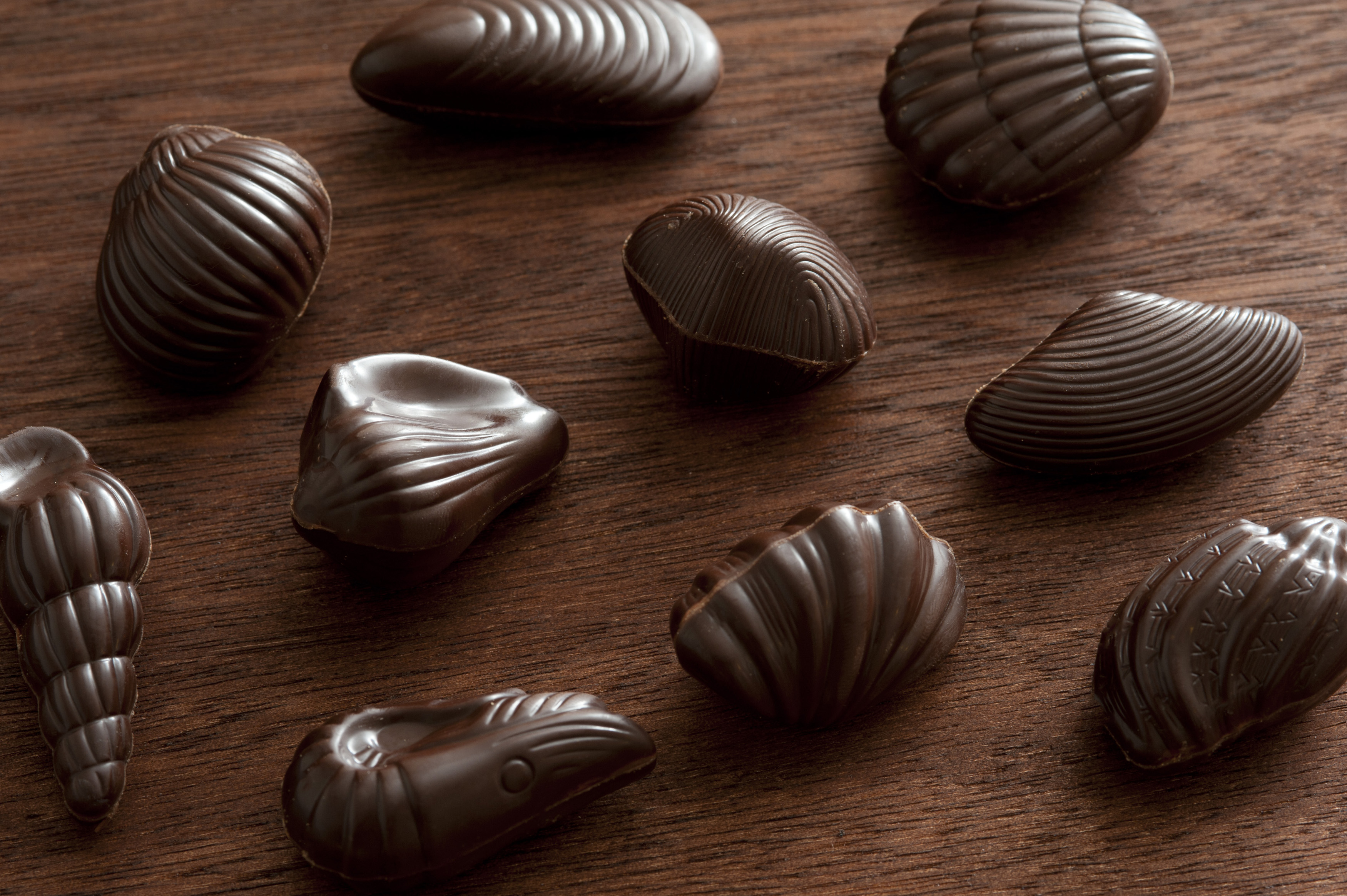 Tasty sweet Belgian chocolates formed as seashells spread out on dark wooden table