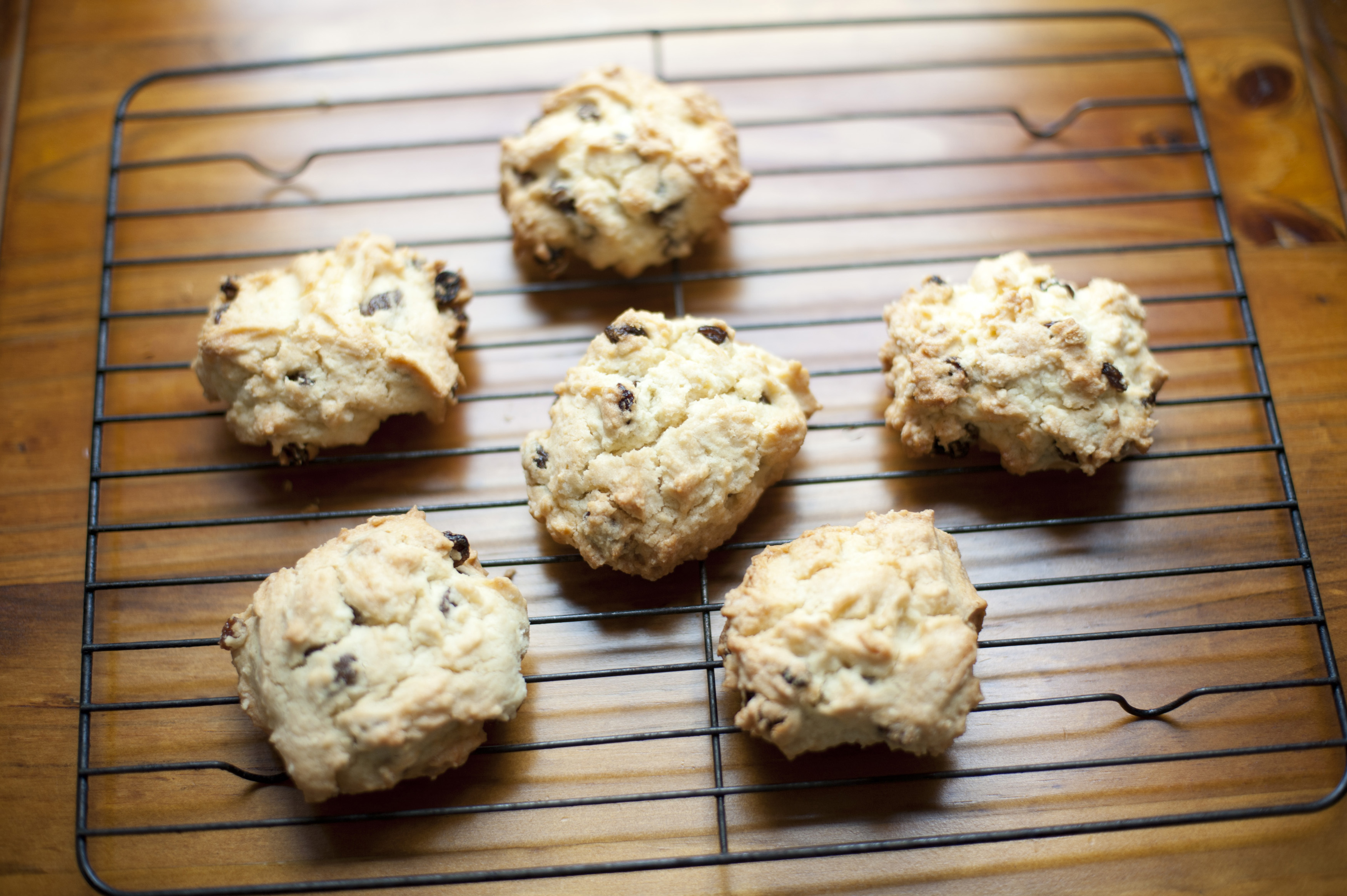 Scrumptious set of six rock scones filled with date pieces on cooling rack over wooden table