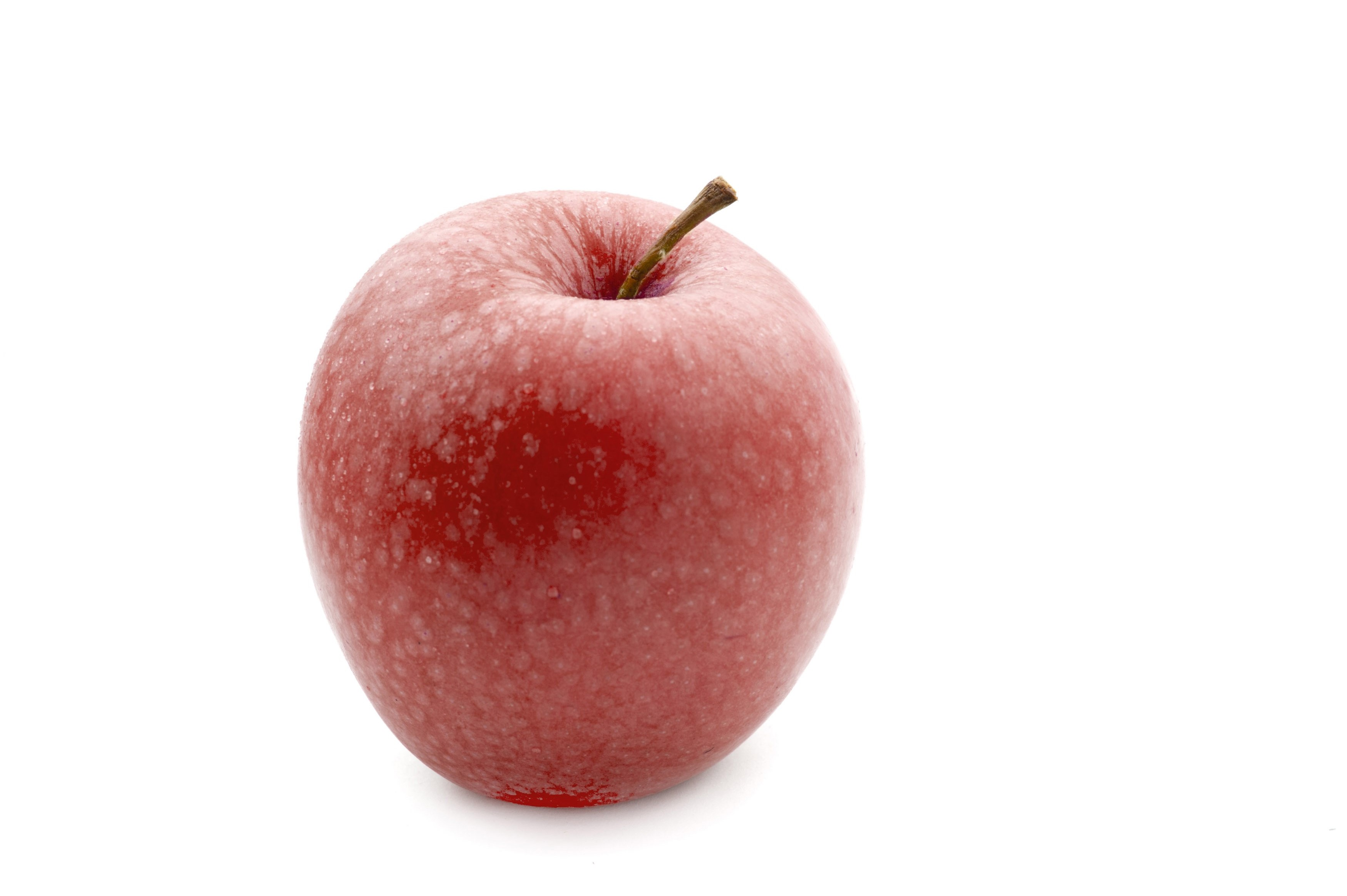 Single healthy juicy fresh red apple with a stalk over a white background