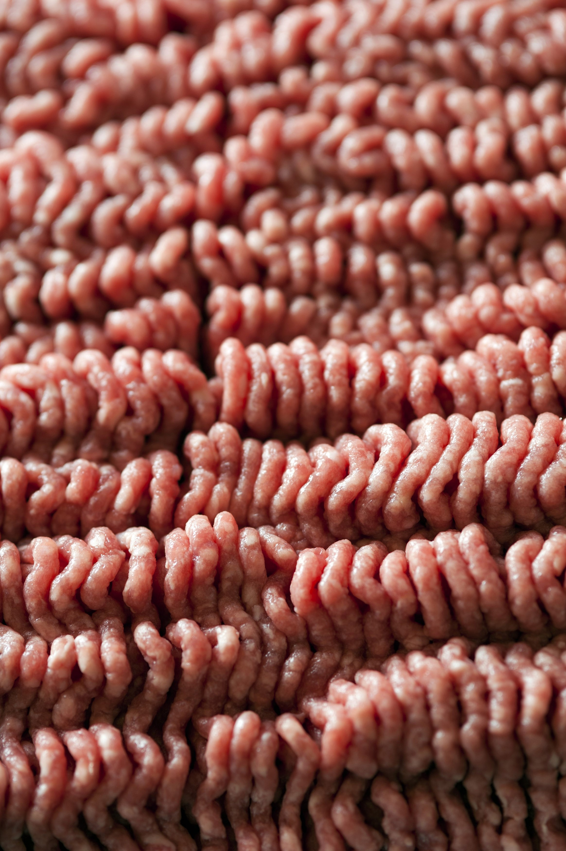 Close up background of the texture of raw beef mince showing the pattern produced by the mincer and having shallow dof