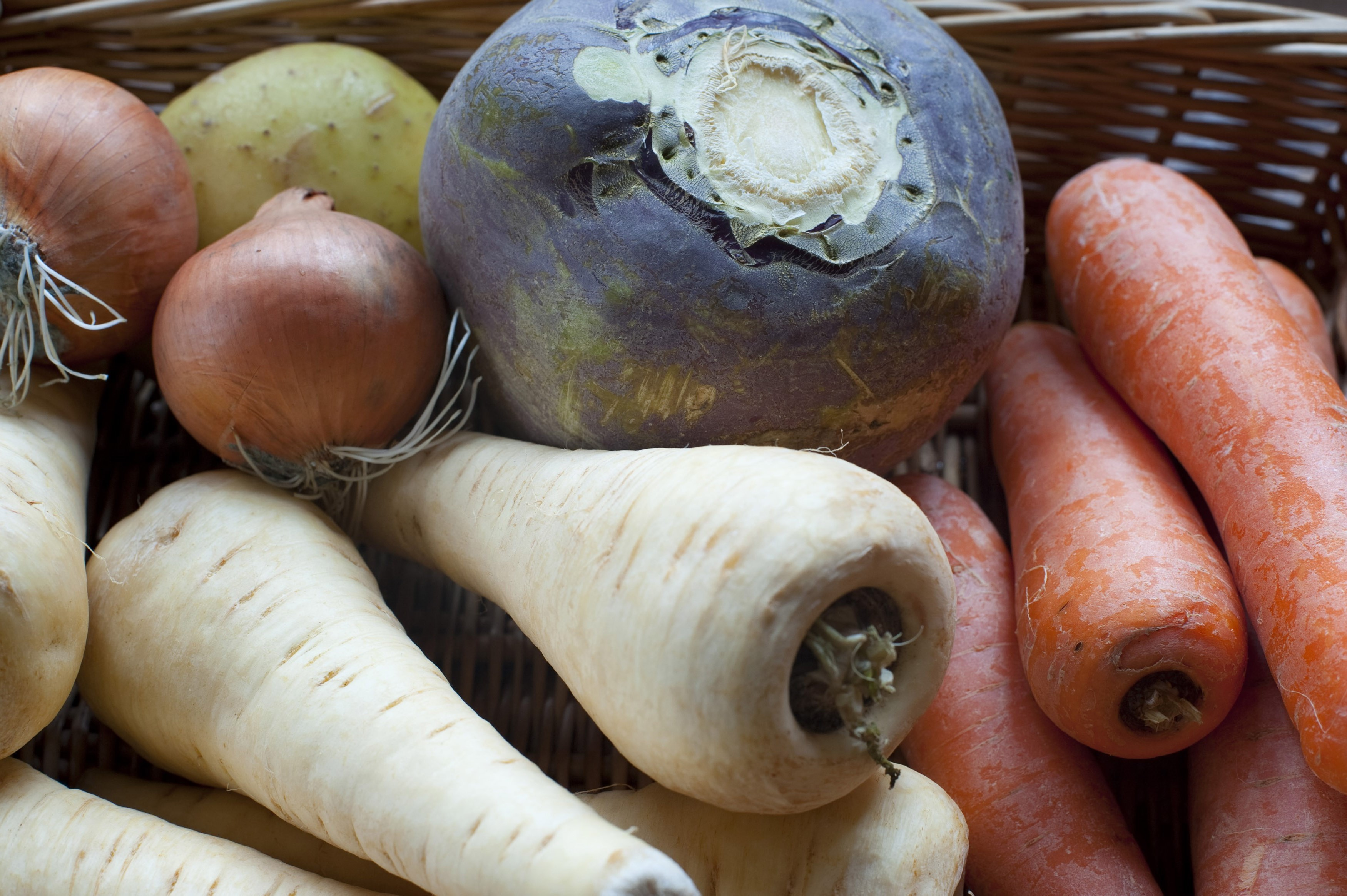 Collection of root vegetables with fresh uncooked turnips, carrot and parsnip in a wicker basket at farmers market