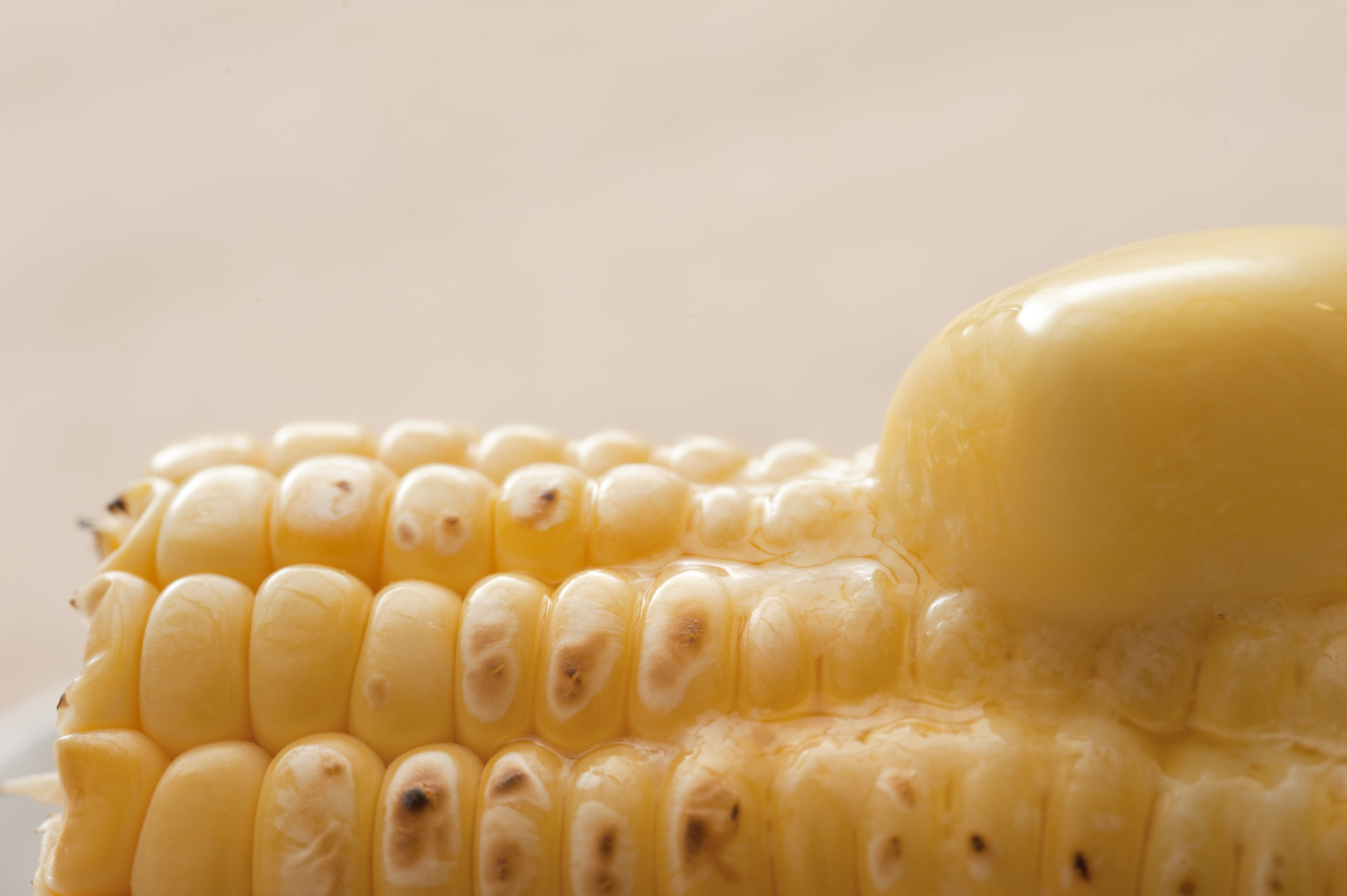 Hot grilled sweet corn with a dollop of melting butter, close up view of the kernels and butter over a neutral beige background with copyspace